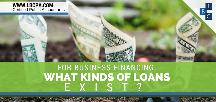 For business financing, what kinds of loans exist?